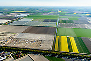 Nederland, Noord-Holland, Hollands Kroon, 07-05-2018; bouw nieuwe kassen te midden van bloembollenvelden, nabij Agriport A7.<br /> New greenhouses are being build amidst lower fields, near Agriport A7.<br /> <br /> luchtfoto (toeslag op standaard tarieven);<br /> aerial photo (additional fee required);<br /> copyright foto/photo Siebe Swart
