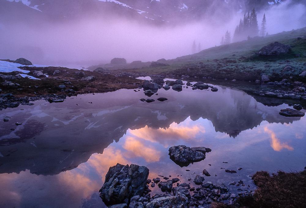 Upper Royal Basin, evening reflection in an alpine tarn, summer, Olympic National Park, Washington, USA