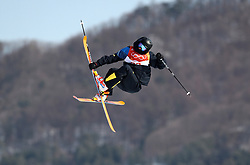 Sweden's Oliwer Magnusson in action during the qualification runs of the Men's Ski Slopestyle at the Bogwang Snow Park during day nine of the PyeongChang 2018 Winter Olympic Games in South Korea. PRESS ASSOCIATION Photo. Picture date: Sunday February 18, 2018. See PA story OLYMPICS Slopestyle. Photo credit should read: Mike Egerton/PA Wire. RESTRICTIONS: Editorial use only. No commercial use.