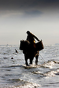 Dressed in the brightest of bright yellow oilskins and waist high boots, the fishermen plod across the sands and after checking and re-checking their nets, wade out into the cold seas.