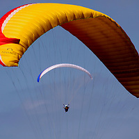 USA, California, San Diego. Paragliders fill the sky at Torrey Pines on a breezy day.