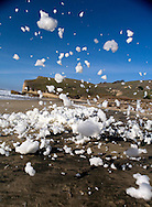 Foam storm on Pescadero Beach, California