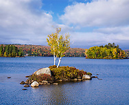 A Tiny Island In Tupper Lake During Autumn In The Adirondack Mountains Of New York State, USA
