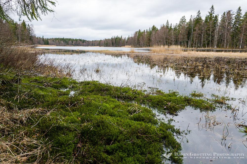 Sweden, Hunneberg table mountain. Lake.