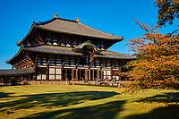 Japon, île de Honshu, région de Kansai, ville de Nara, monuments historiques de l'ancienne Nara classés Patrimoine Mondial de l'UNESCO, Todai - Ji temple, le Daibutsu den, le grand Bouddha, pavillon central // Japan, Honshu island, Kansai region, Nara, UNESCO wolrd heritage site, Todaiji temple, Daibutsu den, the Great Buddha