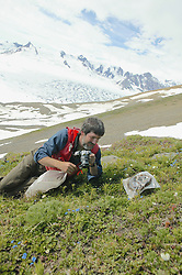 Bruce Bennett Collecting & Photographing Plants On Mountainside
