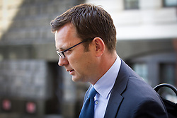 © Licensed to London News Pictures. 15/07/2013. London, UK. Andy Coulson, former Director of Communications for British Prime Minister David Cameron and editor of the News of the World from 2003 to 2007, arrives at the Old Bailey in London today (15/07/2013) as part of a directions hearing linked to the Metropolitan Police Service's Operation Elveden and Operation Weeting investigations. Photo credit: Matt Cetti-Roberts/LNP