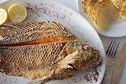 Gebratener Sankt Peters Fisch, Galiläa, Israel.|.St. Peter's fish, Galilee,  Israel.