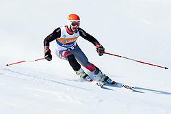 BATHUM Mark, USA, Giant Slalom, 2013 IPC Alpine Skiing World Championships, La Molina, Spain