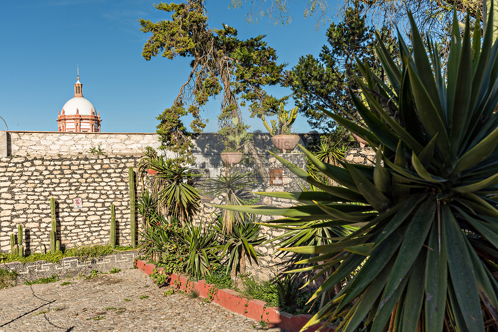 A garden in the ghost town of Mineral de Pozos, Guanajuato, Mexico. The town, once a major silver mining center was abandoned and left to ruin but has slowly comeback to life as a bohemian arts community.