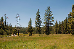 Princess Meadow, Kings Canyon National Park, California, USA.  Photo copyright Lee Foster.  Photo # california121613