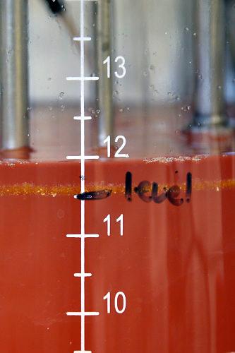 Nederland, Nijmegen, 20-4-2016Microbioloog Mike Jetten . Onderzoek RU naar zuivering van afvalwater. Hij staat bij een reactorvat, opstelling met afvalwater van Aviko .FOTO: FLIP FRANSSEN