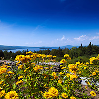 Roadside scenic viewpoint along Maine State Road 4 looking west to Rangeley Lake State Park.