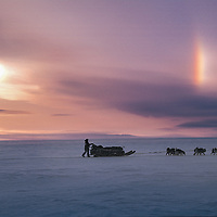 ARCTIC BLAST EXPED., Dog team mushes across sea ice south of Toloyoak, Nunavut, Canada.  Solar parhelion in sky. (MR)