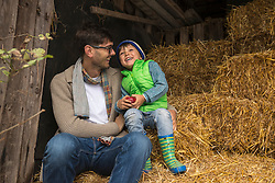 Father and son sitting on straw in the stable and laughing, Bavaria, Germany