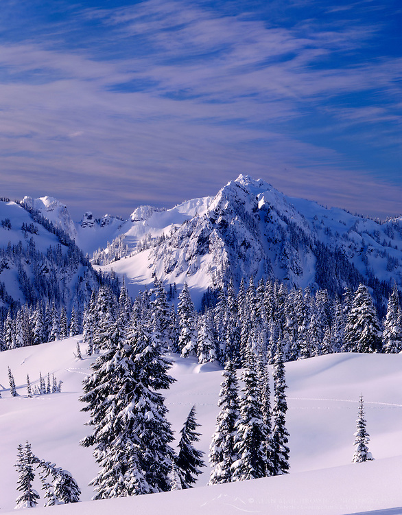 Tatoosh Range in winter, Mount Rainier National Park Washington USA beautiful