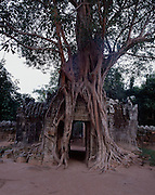 Ta Som was a Buddhitst Temple built by King Jayavarman VII towards the end of the 12 Century.
