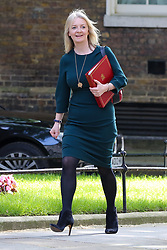 © Licensed to London News Pictures. 18/06/2019. London, UK. Chief Secretary to the Treasury Liz Truss arrives in Downing Street for the weekly Cabinet meeting. Photo credit: Dinendra Haria/LNP