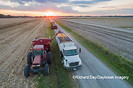63801-12513 Unloading corn into truck during harvest at sunset-aerial  Marion Co. IL