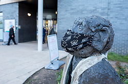 © Licensed to London News Pictures; 30/04/2020; Bristol, UK. A monkey sculpture has had a mask added outside Southmead Hospital during the coronavirus Covid-19 pandemic. Photo credit: Simon Chapman/LNP.