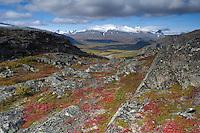 View along Rapadalen from Nammajs, Sarek National Park, Laponia World Heritage Site, Sweden