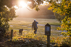 © Licensed to London News Pictures. 22/10/2020. Burnham, UK. A woman walks her dog tat sunrise at Burnham Beeches national park and National Nature Reserve in Buckinghamshire, south East England. Photo credit: Ben Cawthra/LNP