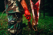 Standing with a bloodied knife and hand is an instructor of a special US Air Force (USAF) survival course (see also Corbis image 42-18212808) who has butchered a deer near their facility at Fairchild AFB, Spokane, Washington State. The man teaches escape and evasion techniques to visiting air crew whose flying careers depend on passing this rigorous week of survival instruction. Should they be downed in hostile territory for example, they will need every skill learned here to survive possibly weeks being hunted in the wilderness so trapping and preparing fresh meat for human consumption is important for survival. Here the teachers stand around the venison which is strung up on a branch, its intestines and organs already removed by a hunting knife. .