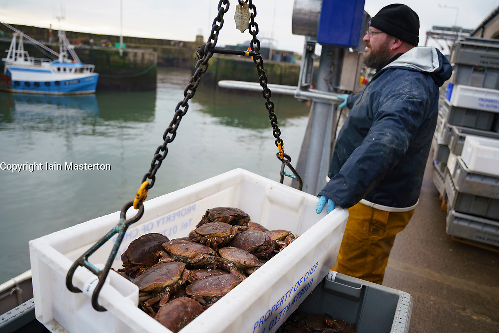Pittenweem, Scotland, UK. 15 January 2020. Fresh shellfish, crab and lobster landed this morning at Pittenweem harbour in Fife. Fisherman Nick Irvine has two boats that catches shellfish, shrimp, velvet crab, brown crab and lobster. Much of his catch is exported to Asia and is busy at this time of the year because of upcoming Chinese New Year which increases demand and prices. This has helped to offset problems exporting into the EU because of new regulations. Pic; landing a box of brown crab.  Iain Masterton/Alamy Live News