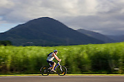 Cyclist passes a sugar cane field at Freshwater Connection, Australia