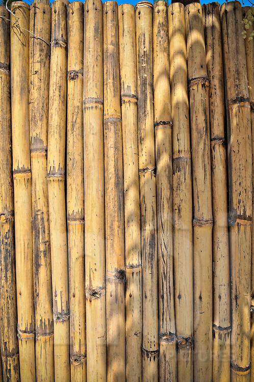 Bamboo fence, Nha Trang, Khanh Hoa Province, Vietnam, Southeast Asia