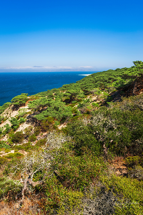 Skunk Point from the Torrey Pines Trail, Santa Rosa Island, Channel Islands National Park, California USA