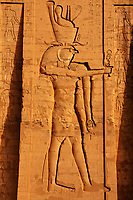 frieze of Horus in his temple in Edfou in upper egypt
