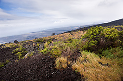 View from Kealakomo located on the crest of the Holei Pali. The 1,000 foot high escarpment is located in Hawaii Volcanoes National Park on the Big Island of Hawaii.