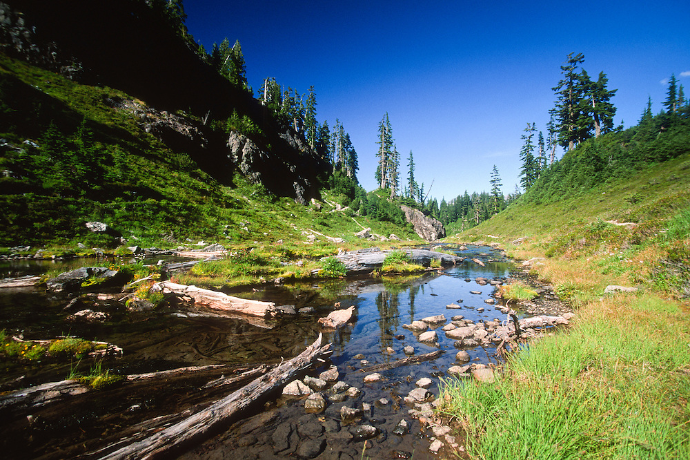 Outlet at Cokdwater Lake, Mt. St. Helens National Volcanic Monument, Washington, US