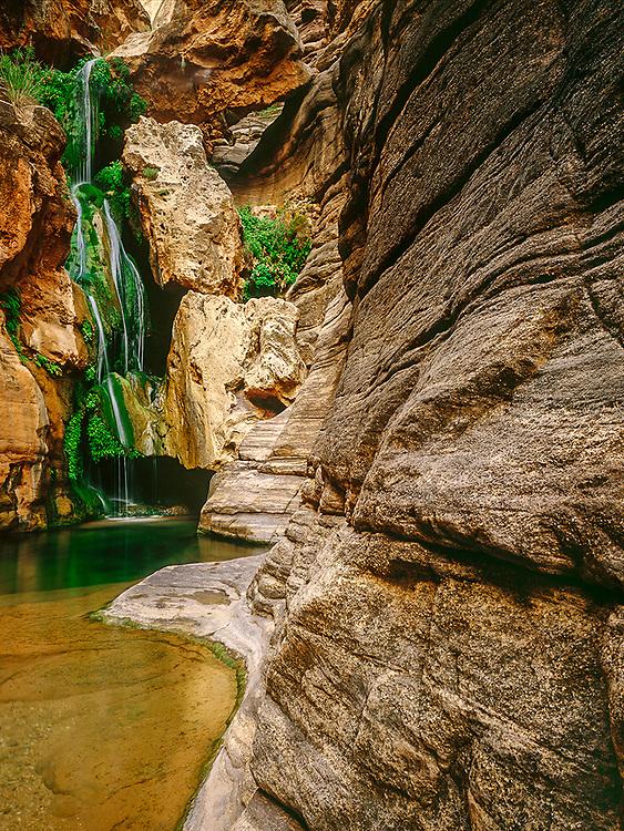 Elves Chasm, inner canyon, early summer, Grand Canyon, Arizona, USA