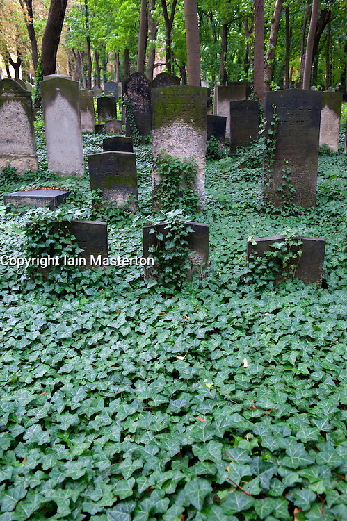 Old gravestones at the old Jewish cemetery in Prenzlauer Berg in Berlin Germany
