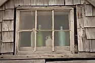 Sand-blasted bottles behind sand blasted glass at the Sasha dune shack.