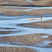 Kayakers are seen maneuvering their way through the salt marsh along  Pinckney Island National Wildlife Refuge in Skull Creek on January 5, 2014.