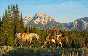 Wranglers leads pack horse across a ridge to get supplies in Grand Teton National Park.
