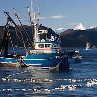 Sitka Herring Fishery