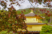 Japan, Kyoto, Zen Buddhist temple Kinkaku-ji (Temple of the Golden Pavilion), AKA Rokuon-ji (Deer Garden Temple)