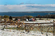 The view from a vista looking north towards Seneca Lake in Dundee, NY, Friday, Nov. 14, 2014.<br /> (Heather Ainsworth for The New York Times)