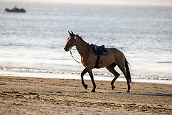 Beach walk, on the run<br /> CSIO La Baule 2021<br /> © Hippo Foto - Dirk Caremans<br />  12/06/2021