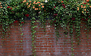 Brick wall with flowers in Santa Fe