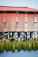 Scenic image of old cannery in Astoria, Oregon.