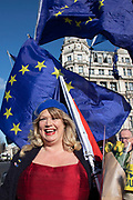 Anti Brexit protesters with European Union and Union Jack flags protest as Prime Ministers questions is due to start in Westminster outside Parliament on 29th January 2020 in London, England, United Kingdom. With only two days until the UK is due to leave the EU, these will be some of the last protests with the UK as a European nation.