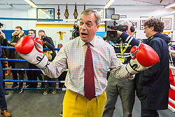 © Licensed to London News Pictures. 05/11/2019. Bolsover UK. Brexit Party Leader Nigel Farage is visiting Bolsover Boxing Club in Bolsover, Derbyshire this morning as he kicks off a nationwide tour as part of the General Election Campaign. Photo credit: Andrew McCaren/LNP