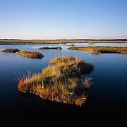 The Great Marsh on the North Shore of Massachusetts encompases 17,000 acres of salt marsh.