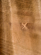 Image of a petroglyph, Anasazi rock art, found at the Procession Panel site in the remote Comb Ridge, San Juan County, Utah.