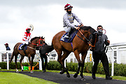 Al Dawodiya ridden by S M Levey trained by R Hannon and Calypso Danser ridden by L P Keniry trained by M S Saunders - Mandatory by-line: Robbie Stephenson/JMP - 06/08/2020 - HORSE RACING - Bath Racecourse - Bath, England - Bath Races